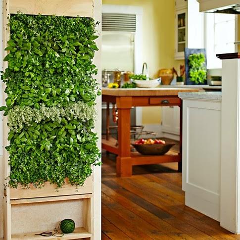 Avere un giardino con le piante aromatiche in cucina è un aiuto in più