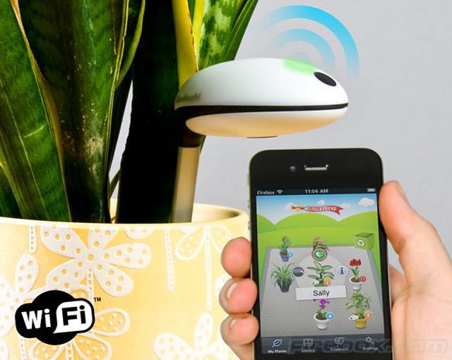 Il sensore Wi-Fi per piante