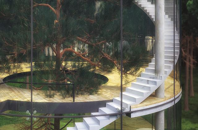 La casa intorno all'albero
