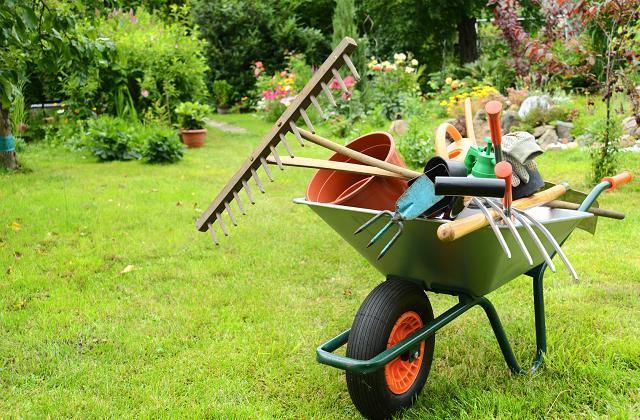 Curare il giardino nel mese di settembre