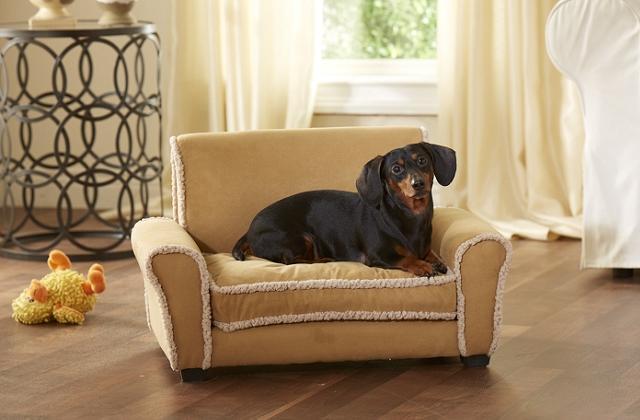 Il divanetto da salotto per animali domestici
