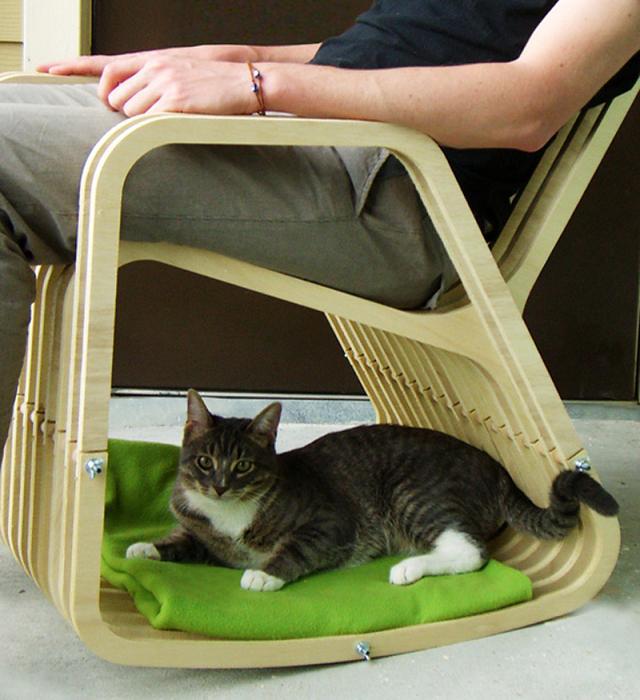 La sedia a dondolo per animali (e padroni) dormiglioni