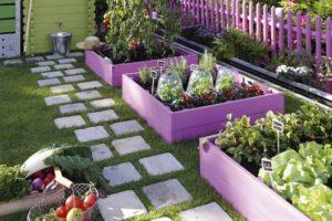 10 cose da sapere per iniziare a coltivare un orto biologico