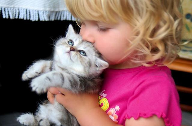 Gli animali domestici aiutano i bambini a sconfiggere le allergie