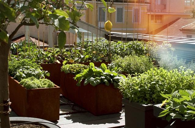 Ecoincentivi per giardini e orti privati e condominiali