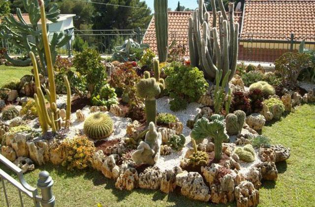 Creare un bel giardino con le piante grasse pagina 2 di 2 - Composizione piante grasse giardino ...