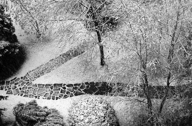 Avere un bel giardino d 39 inverno come fare - Giardino di inverno ...