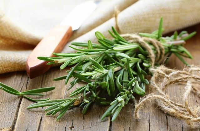Il rosmarino: un ottimo rimedio naturale da riscoprire