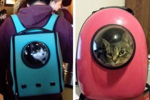 Lo zaino alternativo per portare in giro i nostri gatti