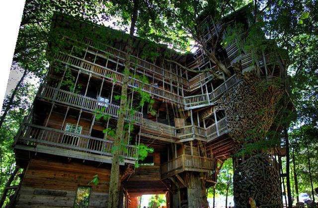 la casa sull'albero più grande del mondo