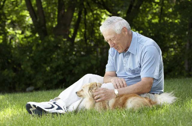 i cani fanno compagnia agli anziani