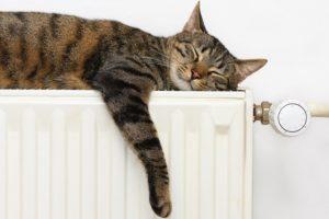 Come ottimizzare l'uso del riscaldamento in casa e risparmiare sulla bolletta