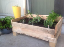 grow box per i fiori