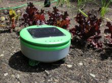robot giardiniere che estirpa le erbacce