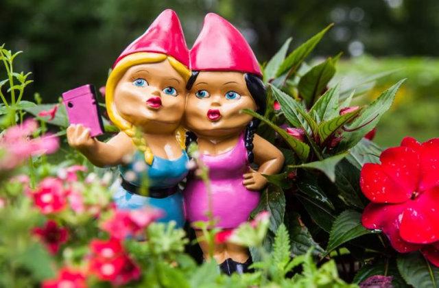 nane da giardino che si fanno i selfie