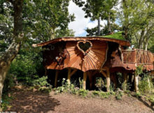 piggledy tree house fronte