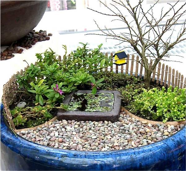Come creare un giardino in miniatura