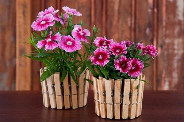 Utilizzare semplici mollette da bucato per creare splendidi vasetti