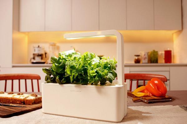 Il futuro del giardinaggio? In miniatura, e portatile