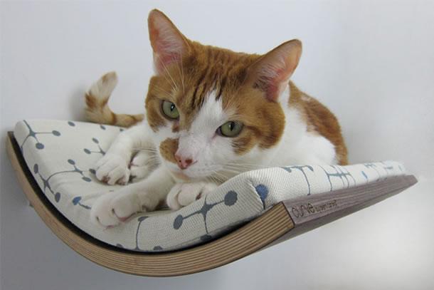 Una piccola mensola curva per il vostro gatto