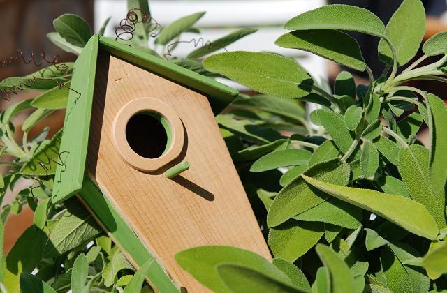 Creare Le Casette Per Gli Uccellini Con Il Fai Da Te Pagina 2 Di 3