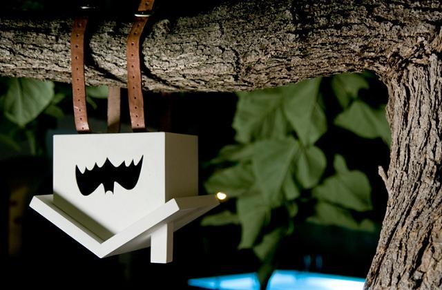 Come costruire una bat-box (la casetta per i pipistrelli)
