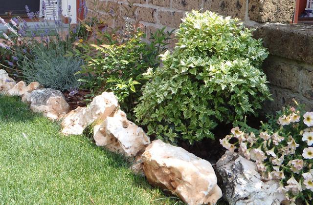 decorare il giardino coi sassi tante soluzioni pagina 3