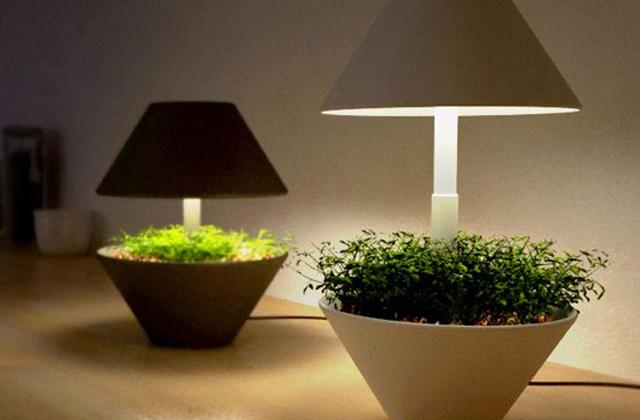 Lighpot lampada vivaio