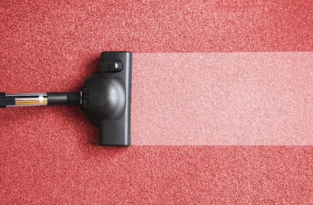 pulire tappeto da soli