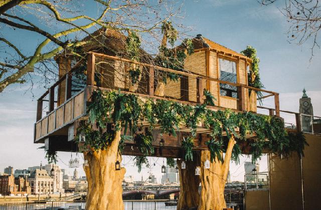 25 casa sull'albero a Londra