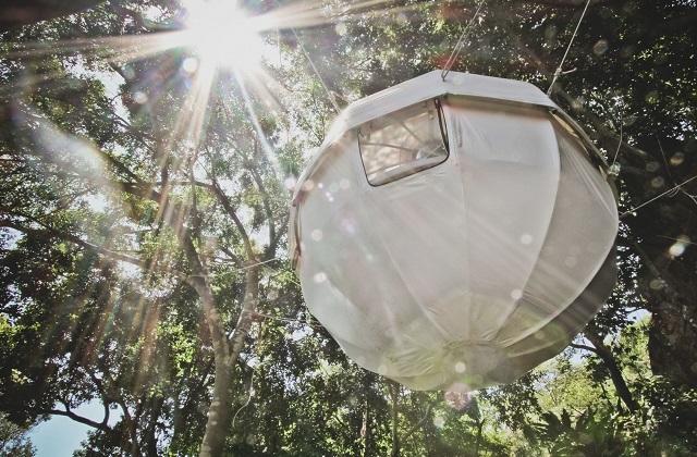 cocoon tree in vimini per campeggiare nelle foreste