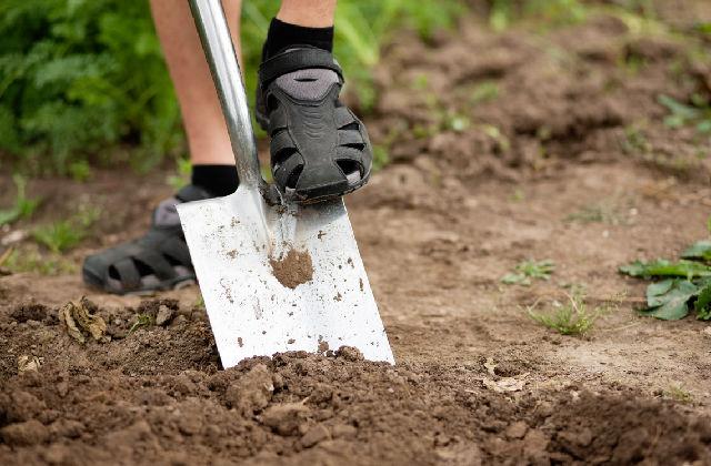 sistemare la terra nell'orto a settembre