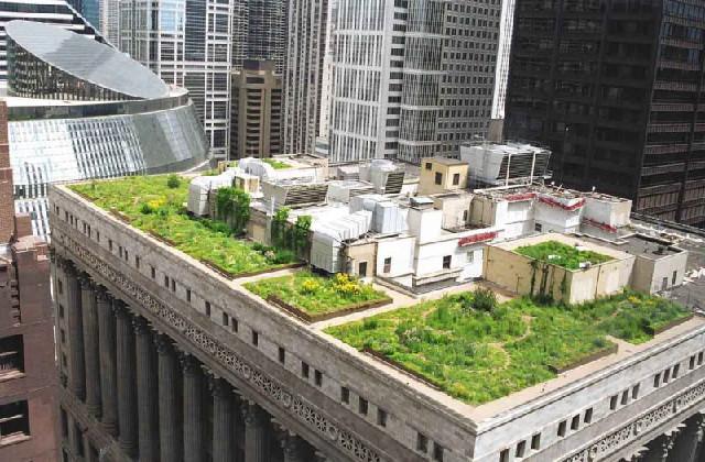 tetti verdi su palazzo di città