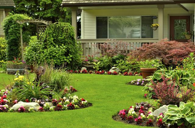 progettare un giardino