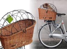 cestino per trasportare il cane in bicicletta