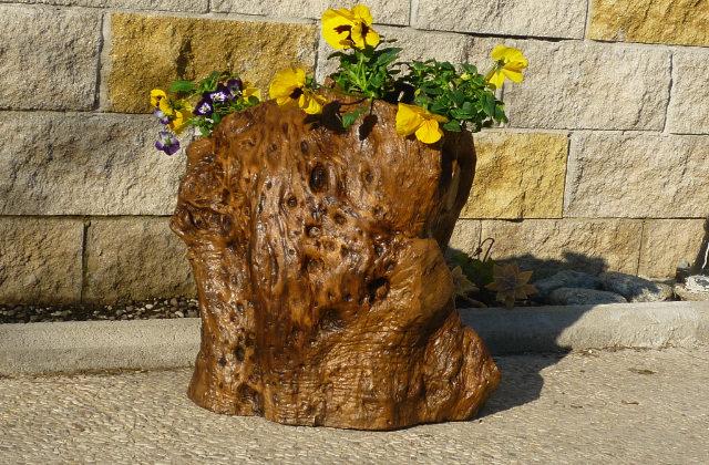 Arredare il giardino con i tronchi d 39 albero idee e consigli for Arredare il giardino