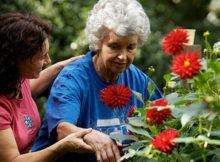 garden therapy anziani