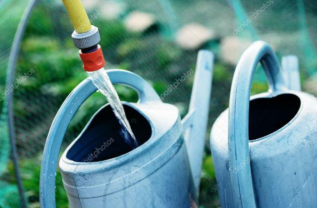 Soluzioni per risparmiare acqua in giardino for Soluzioni per giardino