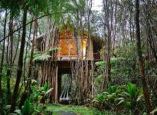 airbnb casa nella foresta