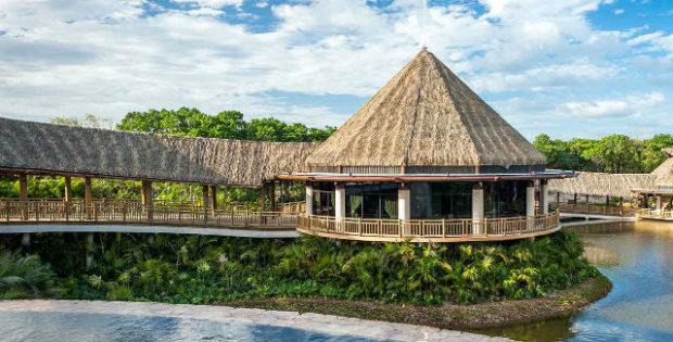 vidanta resort